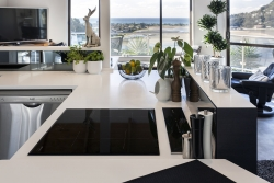 Induction cooktop - black on white