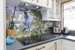 Glass splashback with Tui print