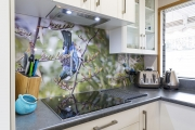 Tui and flax NZ scenery on kitchen splashback